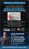 Shinberg Insurance Agency - Dave Buehler